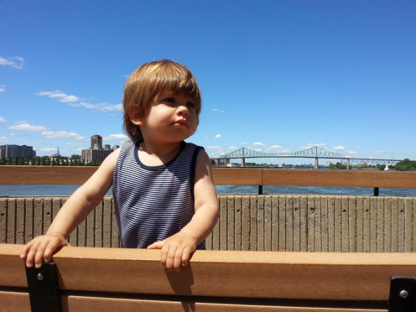 View of the Jacques-Cartier Bridge from the gazebo, Parc de la Cité-du-Havre